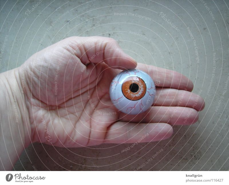 See + Feel Hand Line on the hand Pupil Transience Obscure Eyes Looking Emotions brown eye