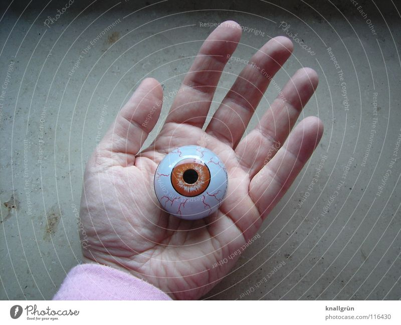 phoney Hand Palm of the hand Pupil Fingers Line on the hand Transience Obscure Eyes brown eye