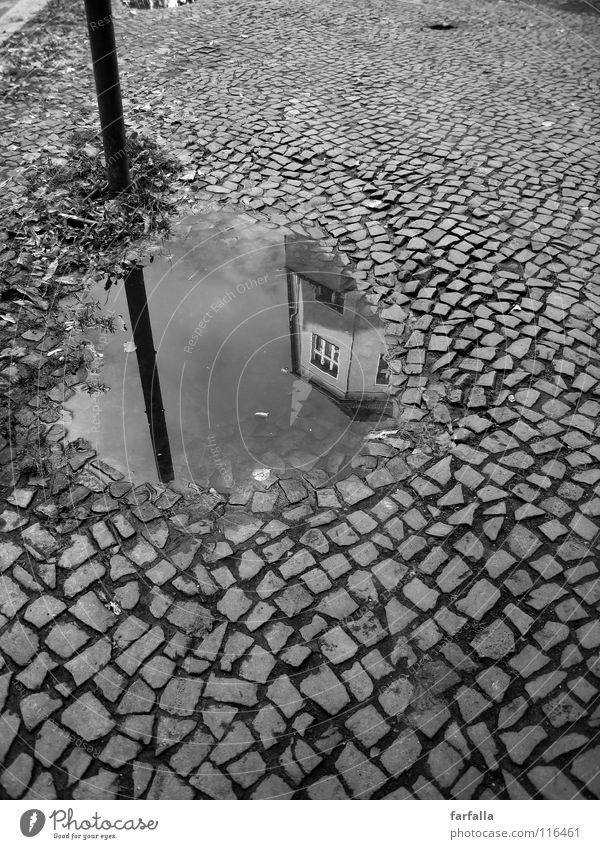slop Puddle Reflection Rod House (Residential Structure) Town Dark B/W Black & white photo Street cobbles Bright