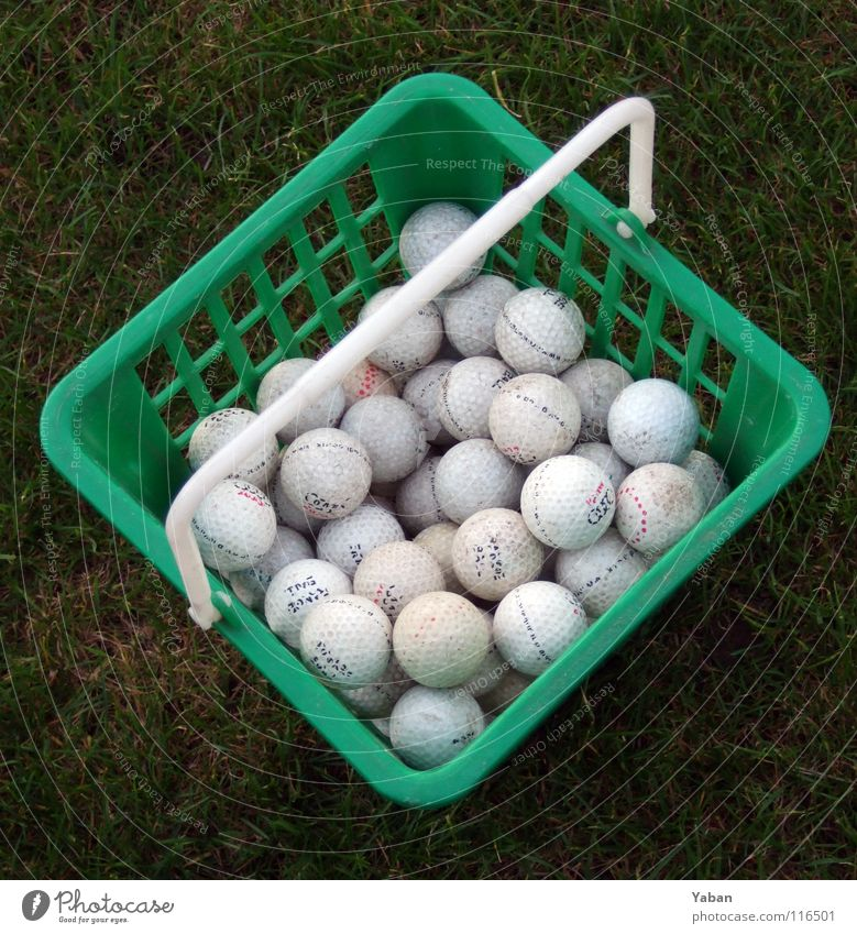 Green Sports Playing Grass Park Lawn Grass surface Golf Statue Collection England Basket Ball sports Golf ball