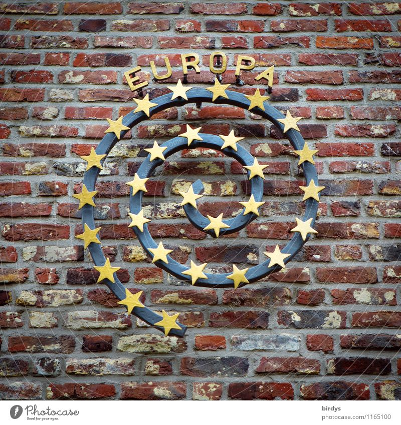 Europe Wall (barrier) Wall (building) Brick wall Spiral Star (Symbol) Stone Metal Sign Characters Euro symbol Esthetic Authentic Elegant Positive Round