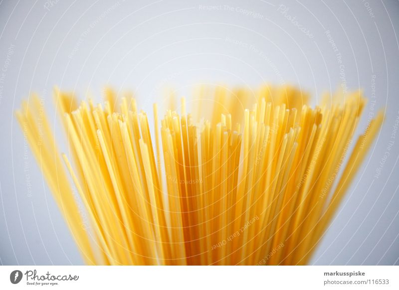 pasta Noodles Spaghetti Dough Rod Long Thin Italy Yellow Flour Vegetarian diet Structures and shapes Egg