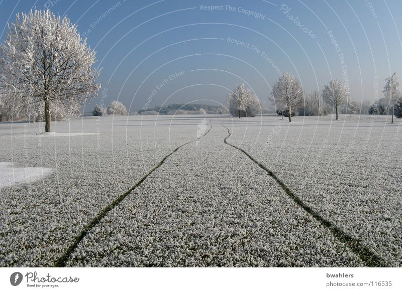 Beautiful Sky White Tree Winter Loneliness Cold Snow Landscape Ice Walking Frost Tracks Hoar frost Ravensburg