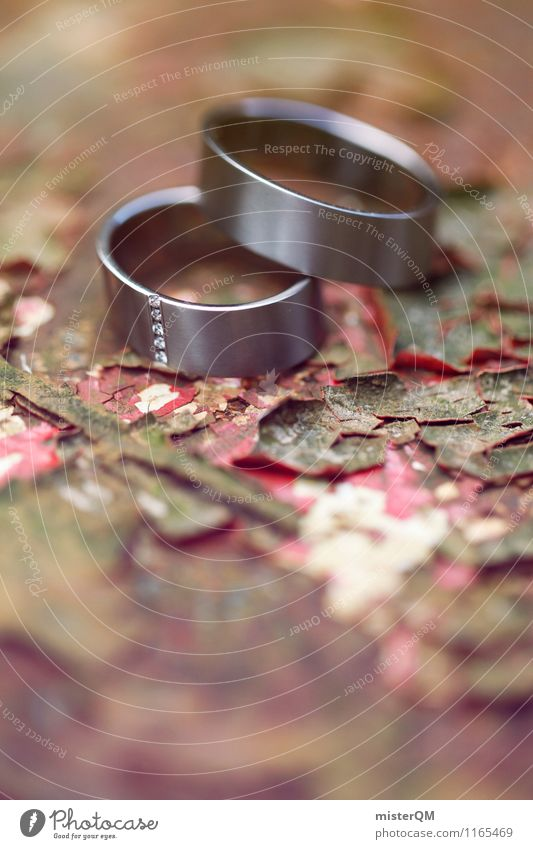 Wedding rings II Art Esthetic Contentment Ring Wedding ceremony Wedding party Together Attachment Symbols and metaphors Rust Colour photo Subdued colour