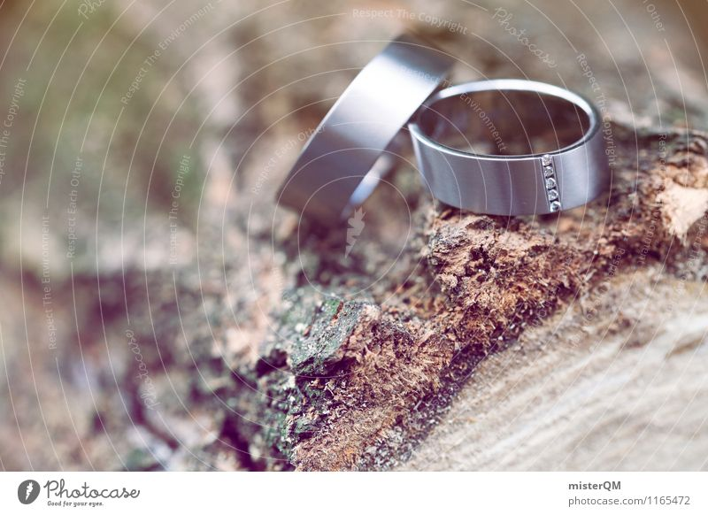Wedding rings I Art Esthetic Contentment Ring Wedding ceremony 2 Together Tree trunk Decent Romance Colour photo Subdued colour Exterior shot Detail