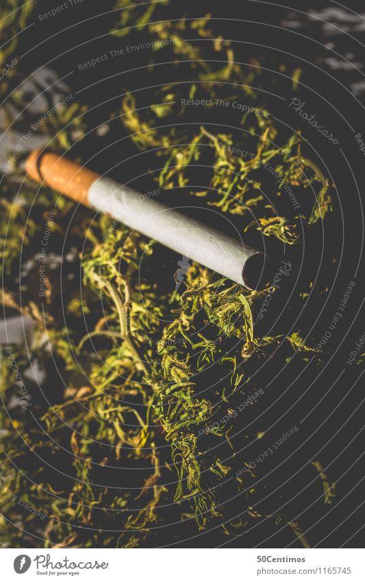 Relaxation Calm Dangerous Threat Smoking Fragrance Intoxicant Cigarette Bans Frustration Experience Cannabis Drug addiction Hemp Industrial Hemp