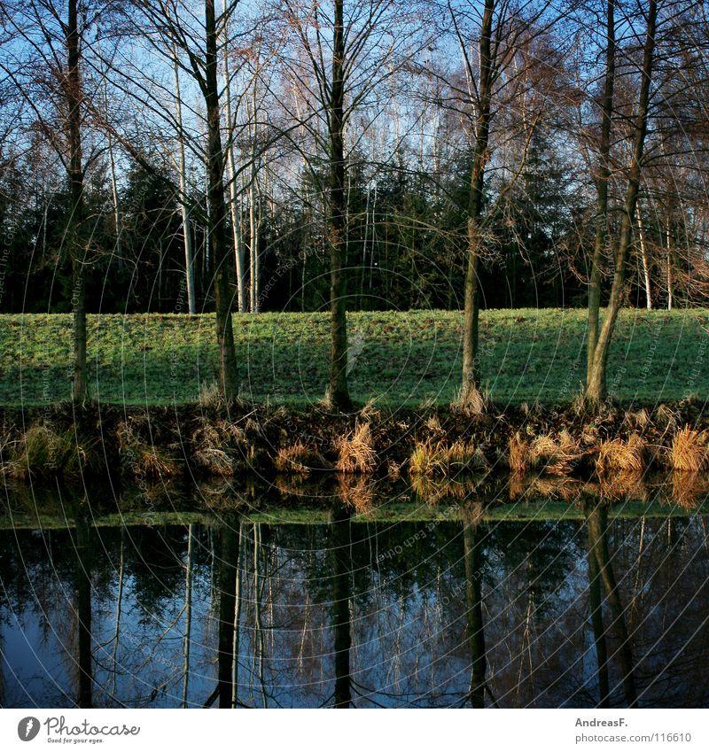 Nature Water Tree Green Blue Autumn Line Lake River Mirror 5 River bank Geometry Brook Symmetry Dike