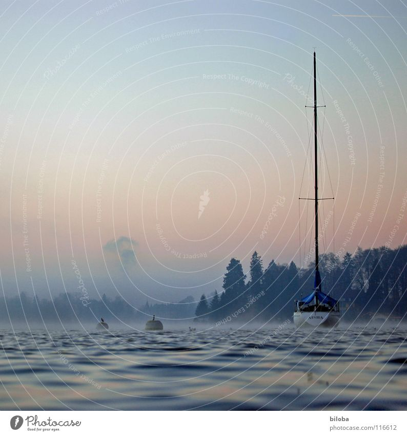 Sky Water Winter Calm Forest Cold Freedom Lake Moody Watercraft Waves Fog Navigation Deep Harmonious