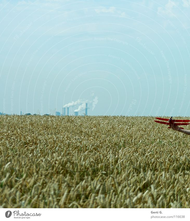 Summer Horizon Exhaust gas Chimney Blue sky Cornfield Wheatfield Smoky Model aeroplane
