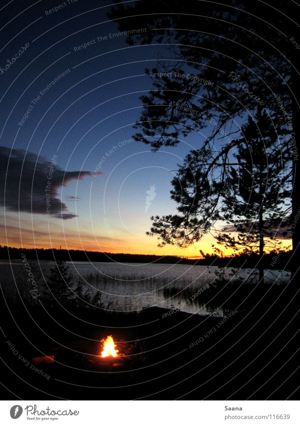 An autumn evening at the lake in Lapland Forest Lake Autumn Sunset Twilight Peace Coast Blaze Nature Water Sky Evening