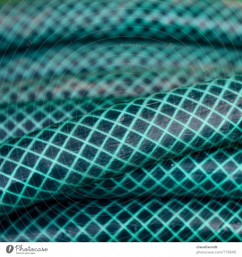 rubberinatter Adder Hose Garden hose Checkered Pattern Abstract Coil Wound up Superimposed Consecutively Muddled Round Gardening Background picture Simple
