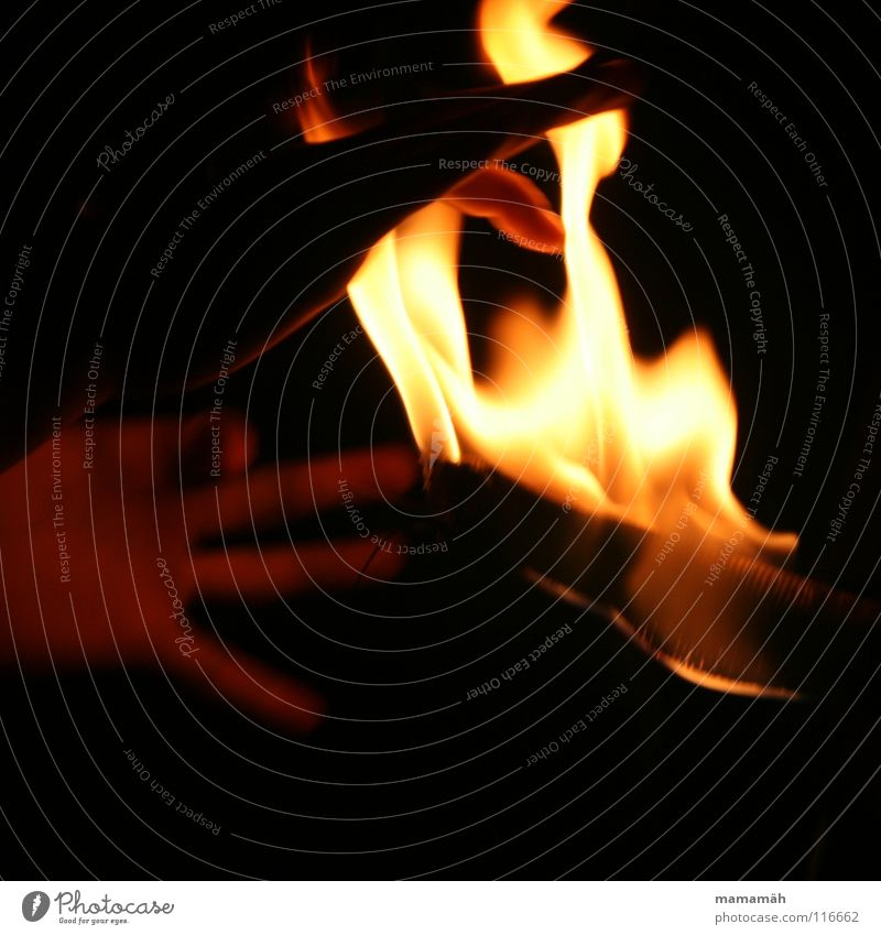 Hand in the fire Fingers Fire Warmth Dark Hot Bright Embers Flame Torch Burn Mysterious Colour photo Exterior shot Night Motion blur Fire hazard
