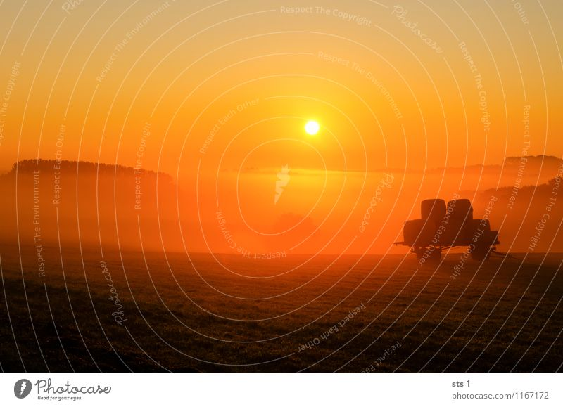 Nature Beautiful Sun Relaxation Red Landscape Calm Black Environment Warmth Natural Happy Freedom Moody Work and employment Dream