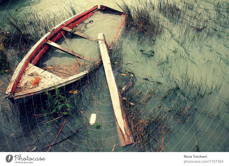 It's never gonna happen. Environment Nature Landscape Plant Water Autumn Climate Gale Grass Bushes Coast Lakeside River bank Ocean Pond Navigation Boating trip