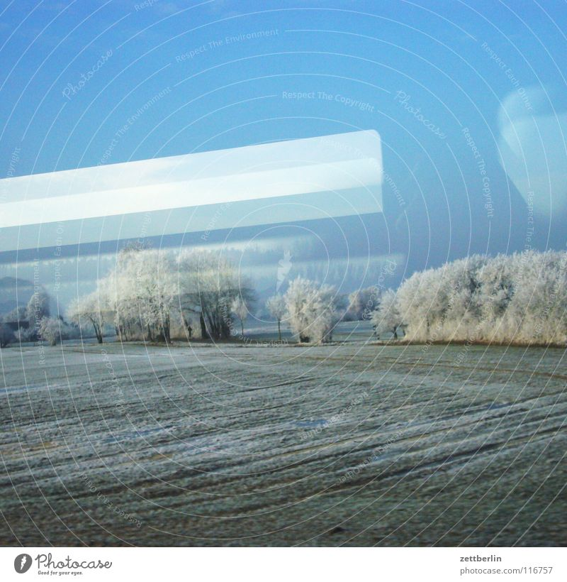 Rail journey to the north 7 Tree Bushes Winter Hoar frost Immature Railroad Train window Overhead line Light Lamp Reflection Driving Passage Field