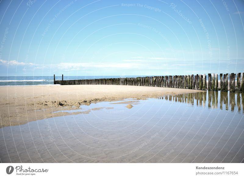 Sky Blue Summer Water Sun Relaxation Ocean Calm Joy Beach Coast Wood Swimming & Bathing Bright Sand Waves