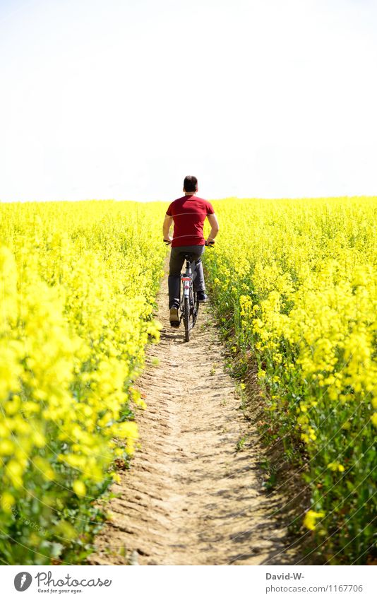 Human being Nature Vacation & Travel Youth (Young adults) Man Plant Summer Landscape Young man Calm Adults Life Lanes & trails Healthy Masculine