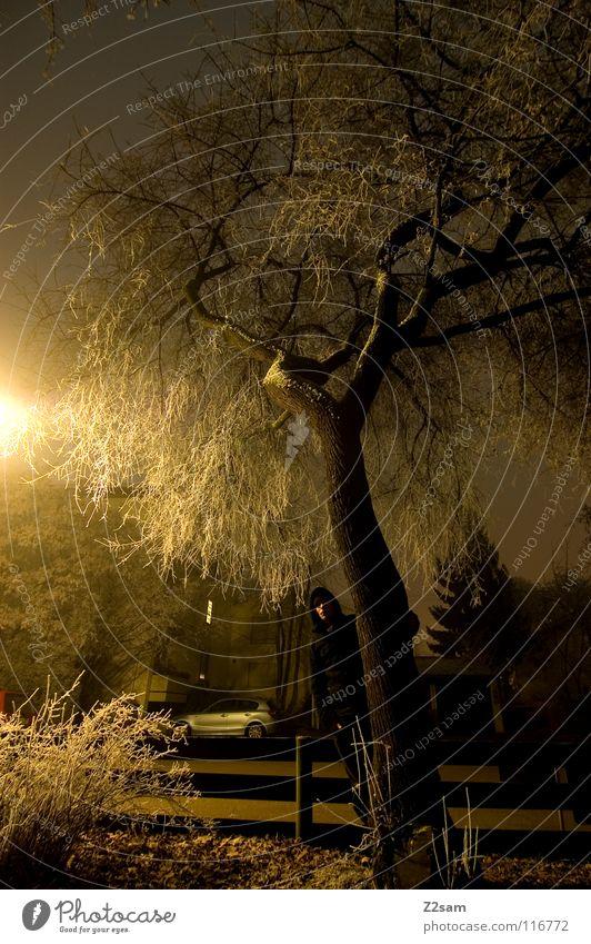 Human being Nature Tree Winter Black Yellow Street Dark Cold Snow Lighting Fear Stand Bushes Creepy Lantern