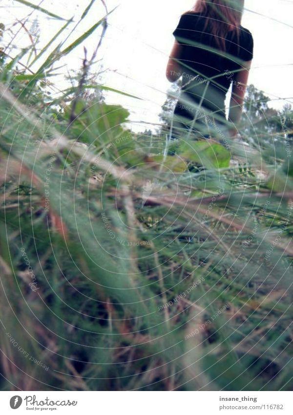 Black Loneliness Meadow Grass Field Fear Doomed Panic