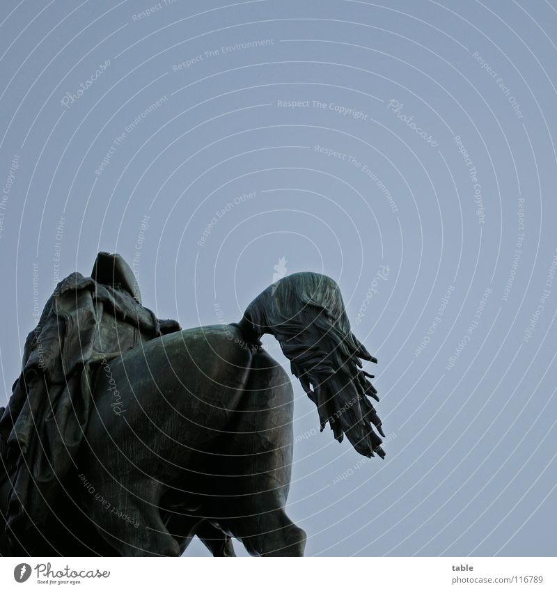 square ass Horse Equestrian statue Unter den Linden Chateau Sanssouci Monument Art Sightseeing Boredom Tourist Arts and crafts  Landmark Berlin Hind quarters