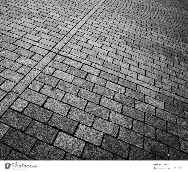 Paving stone II Black White Diagonal Square Rectangle Progress Two-piece Driving Going Traffic infrastructure Black & white photo Cobblestones Stone B/W