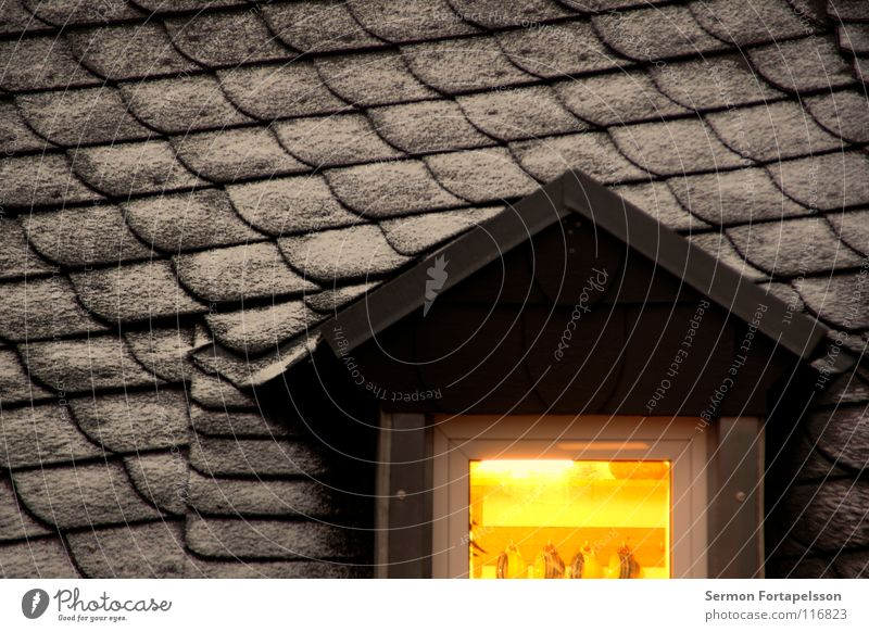 the roof opposite Roof House (Residential Structure) Window Dormer Light Roofing tile Cover Winter Cold Hoar frost Cup Kitchen Building Flat (apartment)