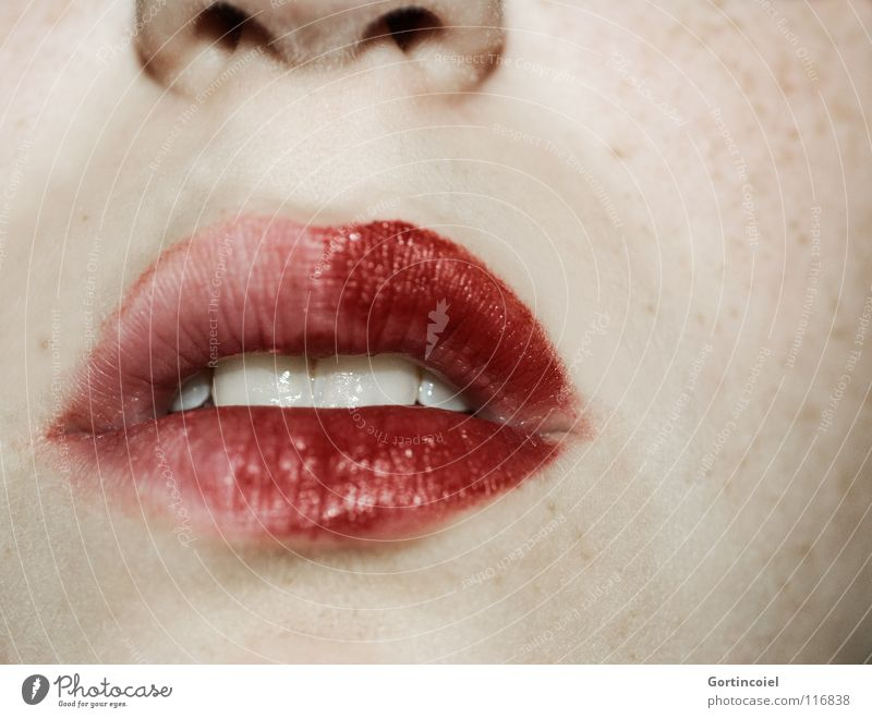 Woman Beautiful Red Adults Open Mouth Nose Teeth Lips Make-up Pallid Freckles Section of image Lipstick Glamor Alluring