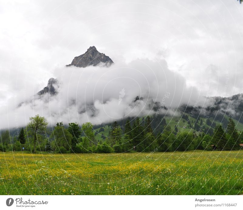 cloud covers Nature Landscape Clouds Summer Weather Grass Mountain Peak Emotions Moody Esthetic Uniqueness Relaxation Experience Freedom Leisure and hobbies