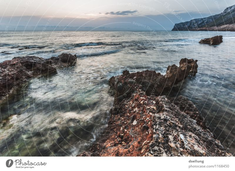Rugged rocky coast in the evening light Freedom Calm Shadow Copy Space top Beautiful weather Sunlight Idyll Exterior shot Earth Summer vacation Nature Landscape