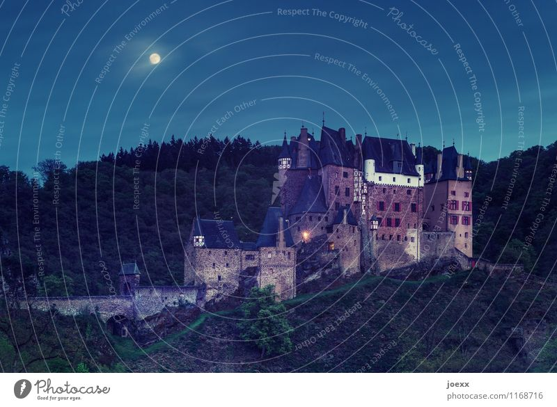 The spook begins. Landscape Sky Night sky Full  moon Beautiful weather Forest Mountain Castle Wall (barrier) Wall (building) Old Large Historic Tall Blue Brown