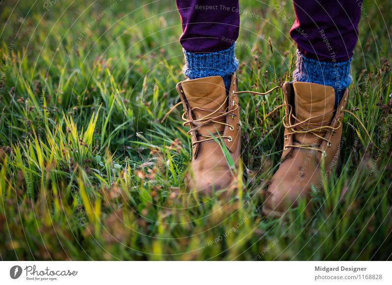 On the meadow Leisure and hobbies Vacation & Travel Tourism Summer Feet Grass Footwear Walking Meadow Timberland socks Well-being Green open shoes Stand Nature
