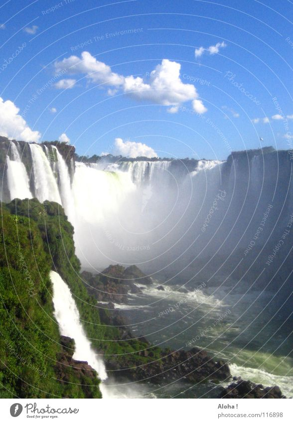 """""""Poor Niagara!""""  I Current Slope Brazil Argentina Art Torrents of water Plant Body of water Tourism Tree Clouds Horizon Drops of water Tourist White crest Fog"""