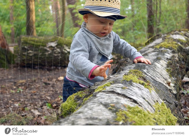 Human being Child Nature Vacation & Travel Green Summer Tree Joy Forest Playing Masculine Infancy Happiness Trip Baby Observe