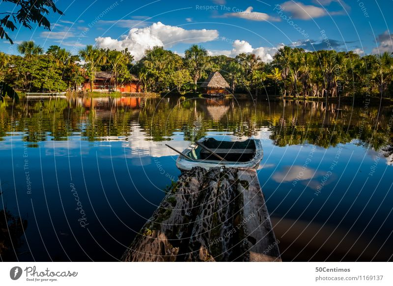 the jungle - Amazonas of Peru Vacation & Travel Tourism Trip Adventure Far-off places Freedom Expedition Camping Summer vacation Island Environment Nature