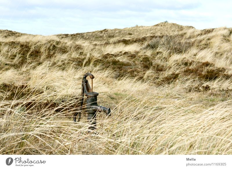 Water Environment Nature Landscape Grass Marram grass Hill Dune Steppe Water pump Well Old Simple Dry Survive Transience Drought Old times Colour photo