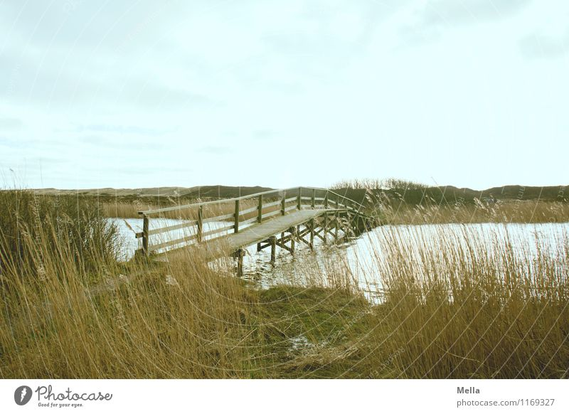 Sky Nature Water Loneliness Landscape Calm Environment Grass Coast Lanes & trails Lake Perspective Beginning Simple Bridge Target