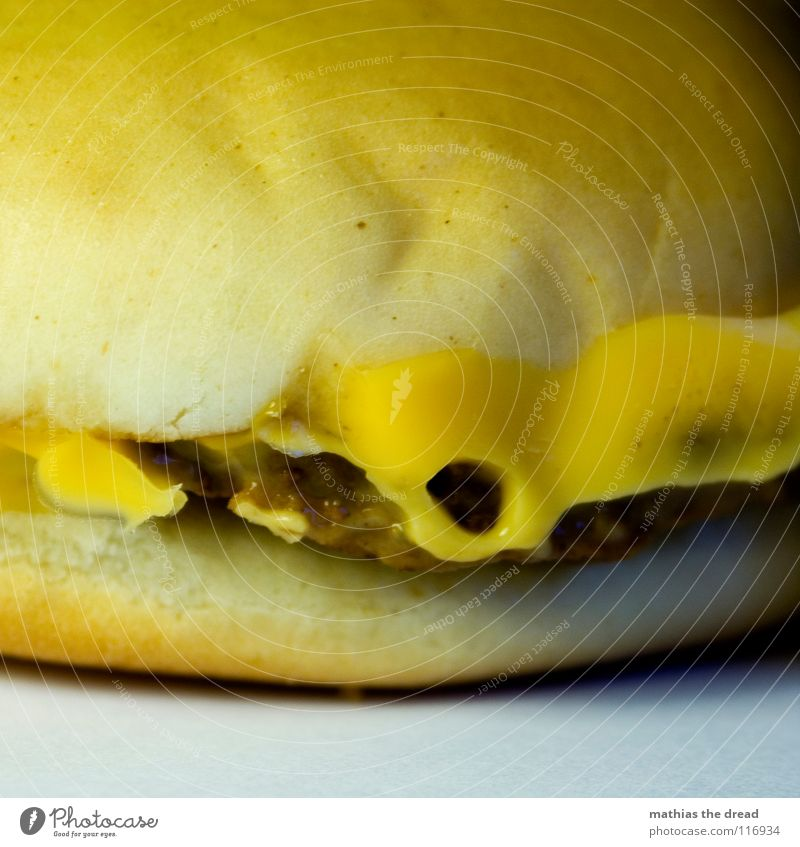 Old Yellow Cold Nutrition Food Dangerous USA Derelict Dry Gastronomy Cow Bread Cardboard Fat Meat Roll