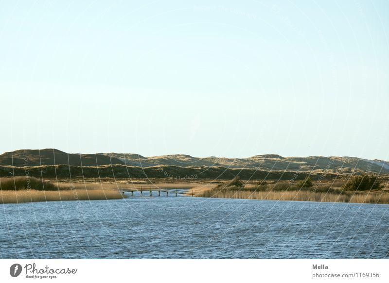 transition Environment Nature Landscape Waves Coast Lakeside Habitat Dune Common Reed Bridge Natural Loneliness Idyll Break Calm Lanes & trails Far-off places