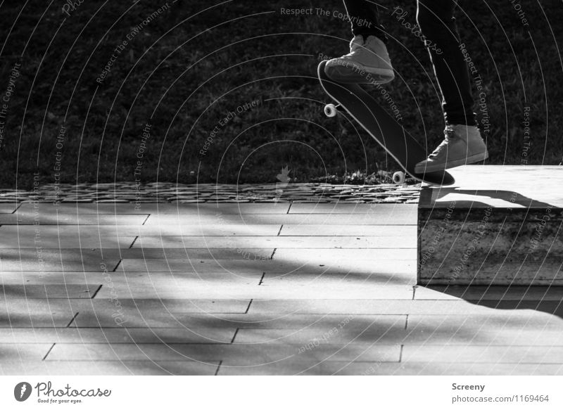 Jump! Leisure and hobbies Skateboarding Skate park Footwear Sneakers Coil Speed Athletic Joy Optimism Success Brave Self Control Contentment Power Ease Risk