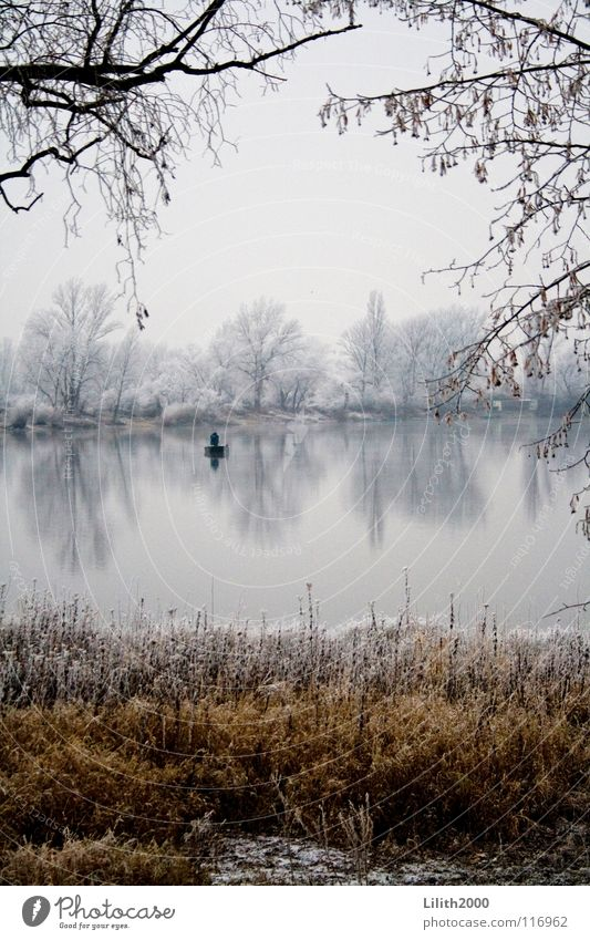 Alone on the lake Lake Pond Winter Tree Cold Angler Fishing (Angle) Fishing rod Watercraft Rowing Grass Brown Beige White Mirror Clarity Snow Frost Ice Twig