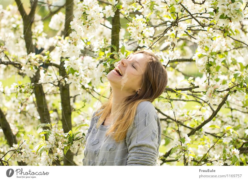 laughing under the blossom tree Joy Happy Feminine Young woman Youth (Young adults) 1 Human being 18 - 30 years Adults Nature Plant Sun Spring Beautiful weather