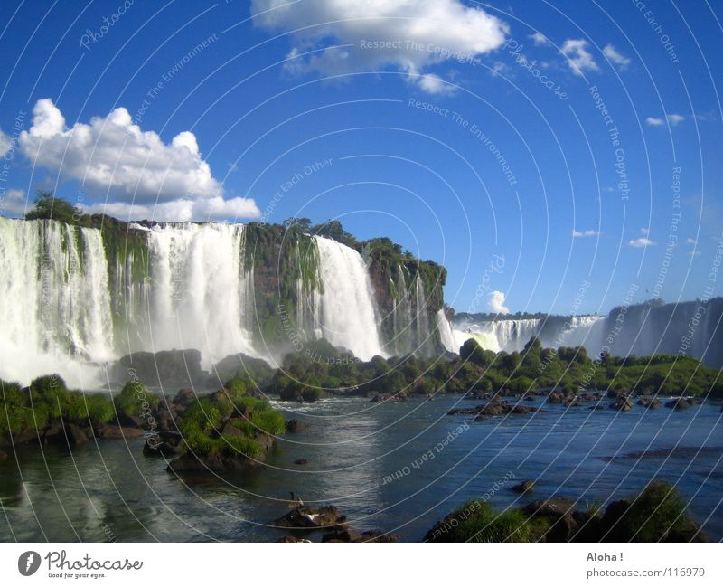 Brazilian Temperament II Current Slope Argentina Art Torrents of water Plant Body of water Tourism Tree Clouds Horizon Drops of water Tourist White crest Fog