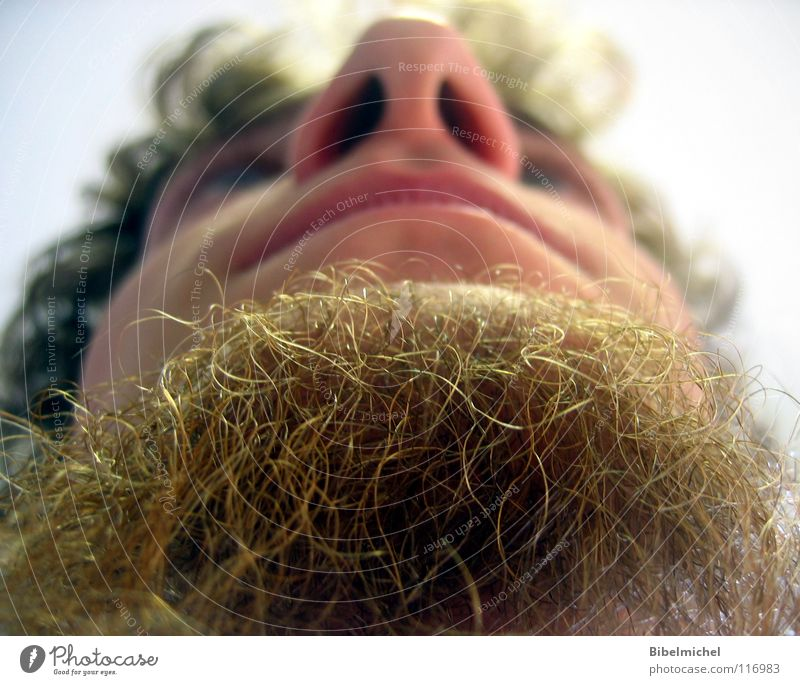 Human being Man Sky Face Hair and hairstyles Mouth Brown Nose Perspective Lips Concentrate Facial hair Worm's-eye view Cheek Mammal Curl