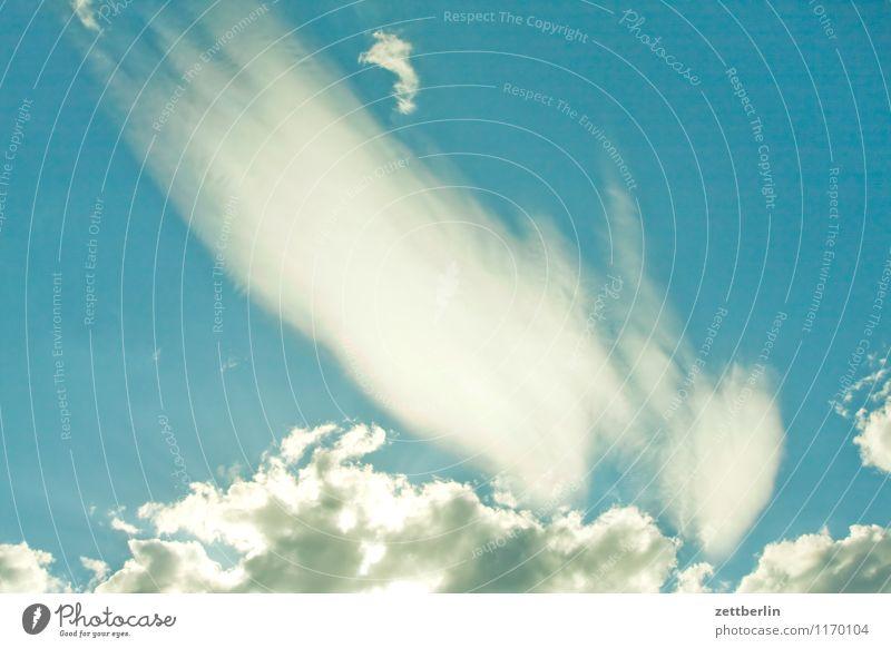 cloud Sky Clouds Cirrus Cumulus Wind Weather Meteorology Summer Spring Worm's-eye view Veil of cloud Cloud shadow Gap in the clouds Rain Blue sky Sky blue Fog