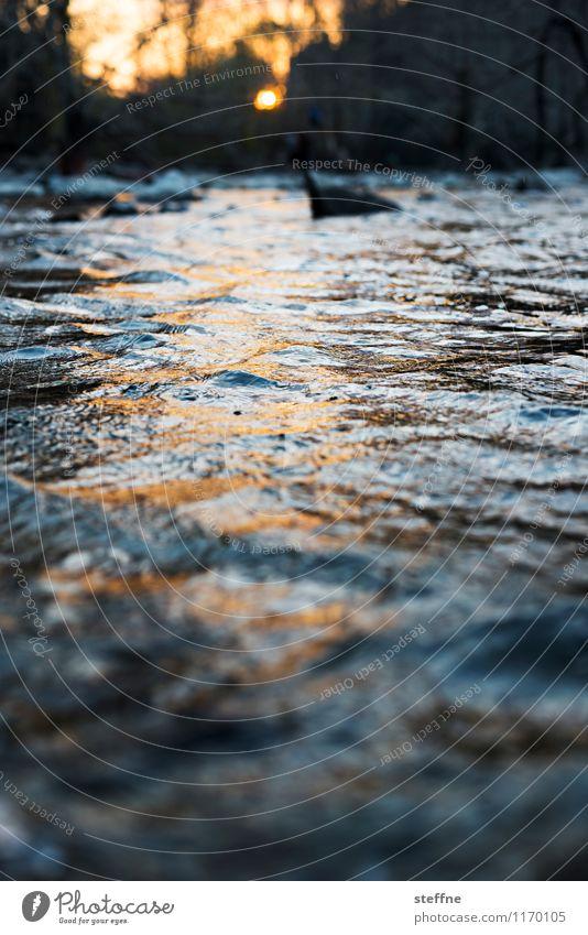 Nature Water Relaxation Landscape Esthetic Beautiful weather Romance Fluid Flow