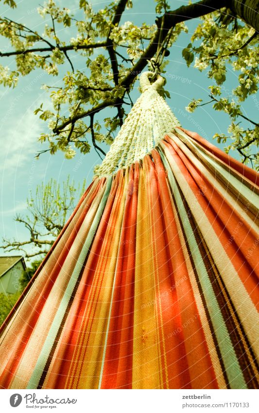 hammock Hammock Vacation & Travel Relaxation Leisure and hobbies Calm Break Restful Lie Hang Cloth Textiles Worm's-eye view Spring Summer Garden Garden plot