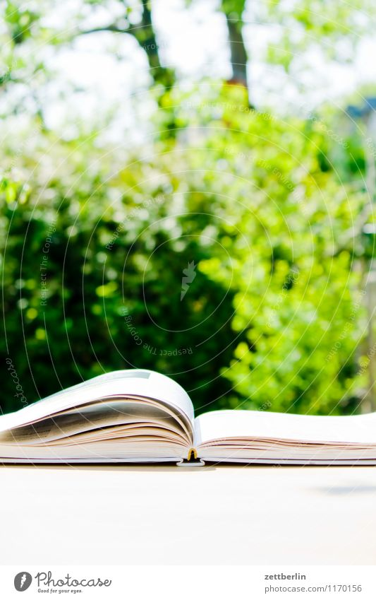 Reading in the garden Berlin To leaf (through a book) Book Trade school Cookbook Spring Garden Small Garden plot Print media Reading matter Literature Paper
