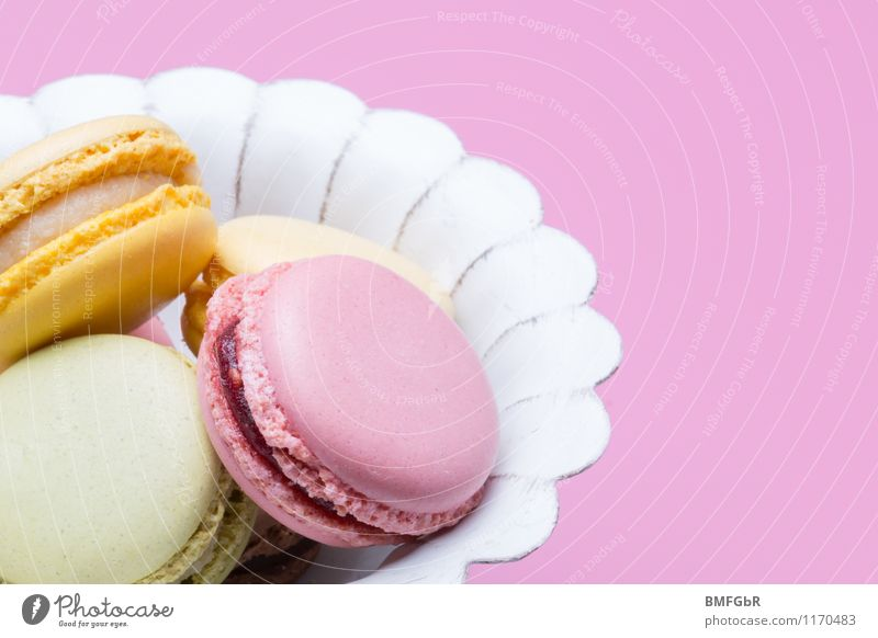 Beautiful Yellow Eating Small Food Party Pink Happiness Nutrition Sweet Violet Delicious Candy Hip & trendy Cake Dessert