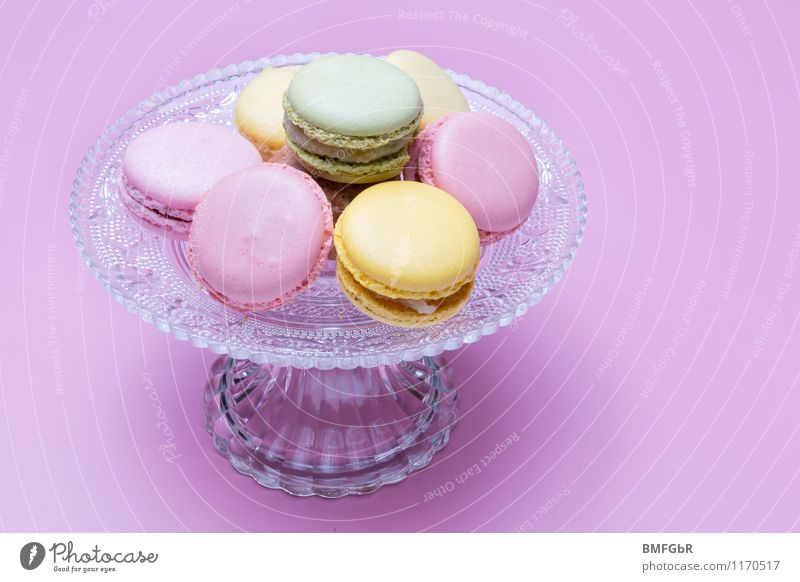 Beautiful Joy Style Happy Food Lifestyle Essen Pink Happiness Nutrition To enjoy Sweet Shopping Violet Candy Good