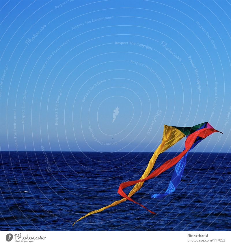 Go to her and fly your kite... Dragon Multicoloured Ascending Go up Red Yellow Green Cold Fresh Strong Wind Deep Salty Ocean Horizon Lake Coast Beach